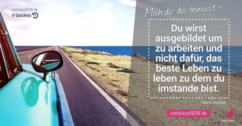 Du wirst ausgebildet um zu arbeiten - consciousNOW.de